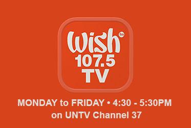 wish-tv-ad-2